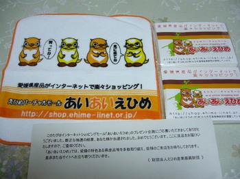 20100526 えひめ産業振興財団 ミニタオル.JPG