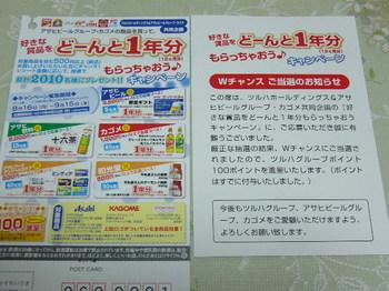 20101126 ツルハグループ×アサヒビールグループ×カゴメ ツルハグループポイント100P.JPG
