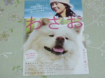 20110117 映画試写会「わさお」.JPG