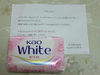 20110201 花王 kaoホワイト.JPG