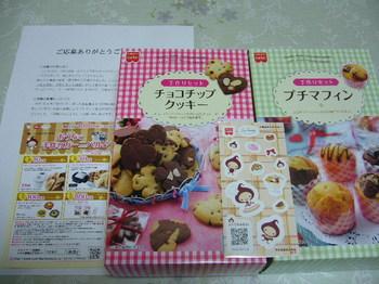 20110404 共立食品 手作りセット商品2箱.JPG