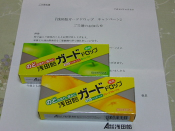 20110414 浅田飴 浅田飴ガードドロップ2個セット.JPG