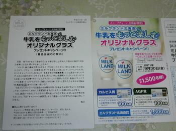20111110 Aコープチェーン北海道 ミルクランド北海道賞.JPG