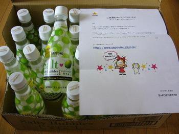 20120824 サッポロ飲料 ソルティ・バブルス ライム 1ケース.JPG