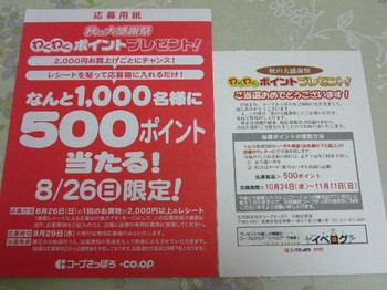 20121024 コープさっぽろ 500ポイント当選ハガキ.JPG