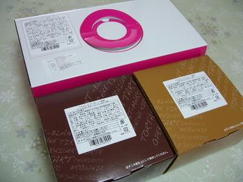 20121224 東光ストア×丸大食品 X'masペアケーキ外箱.JPG