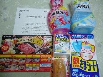 20130328 小林製薬 ラッキー賞.JPG