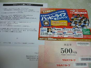 20150901 ツルハドラッグ×花王×STVラジオ ツルハ商品券1,000円分.JPG