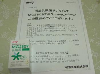 20100329 明治乳業 MG2809乳酸菌.JPG