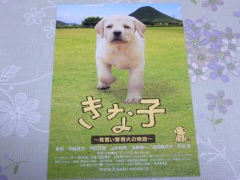 20100707 映画試写会「きな子~見習い警察犬の物語~」.JPG