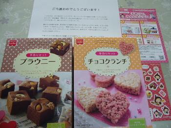 20120401 共立食品 手作りセット2箱.JPG