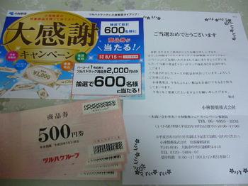 20131002 ツルハドラッグ×小林製薬 ツルハドラッグ商品券2,000円分.JPG